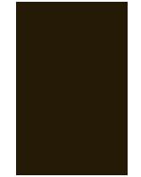 whiplash-tb-logo-2015